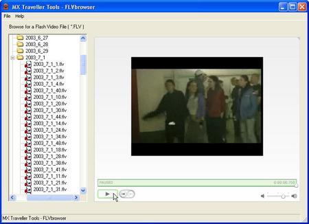 flvbrowser_screenshot