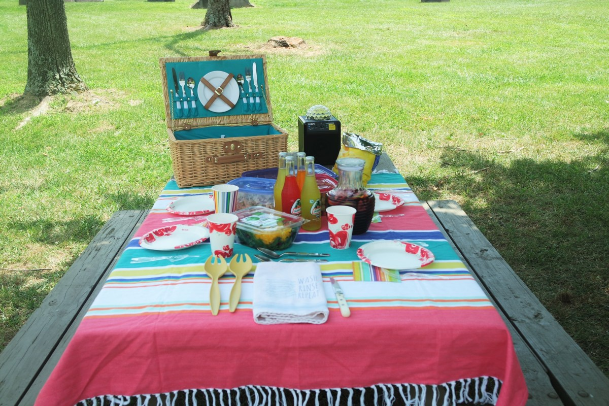 Let's Take A Daycation!                                 The Perfect Picnic