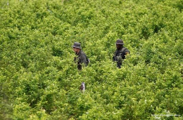 Resultado de imagen para Narcotráfico, terrorismo y militares