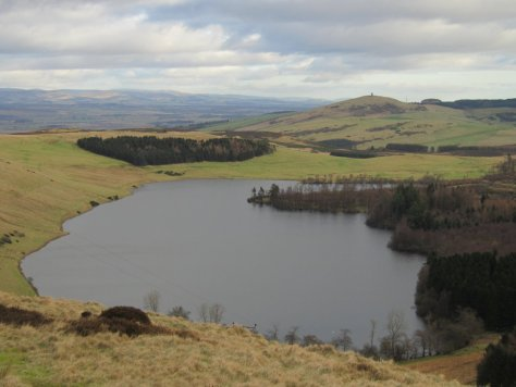 Newtyle Hill and Kinpurney Hill over Long Loch from Westerkeith Hill