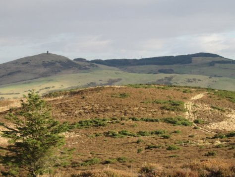 Kinpurney Hill and Henderston Hill seen over Newtyle Hill from Auchtertyre Hill