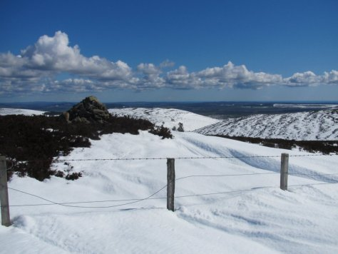 Summit of Gallow Hill