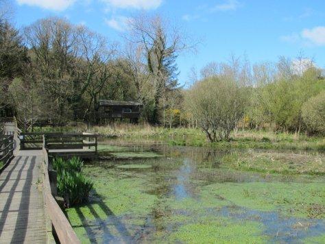 Aldouran wetlands hide