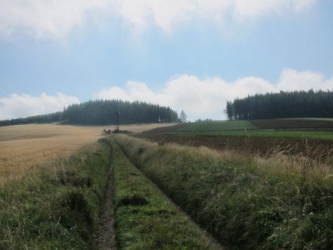 The School Road on Bindirran Hill