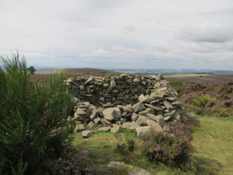 Summit cairn, Carrot Hill