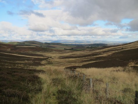 Looking down Glen Ogilvie from between Craigowl and Balkello Hill