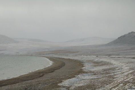 Dragi Bay 1, Wrangel Island