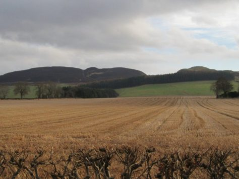 Black Hill and Dunsinane Hill from north
