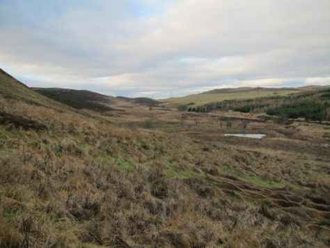 Piperdam Burn lowlands from Blacklaw Hill