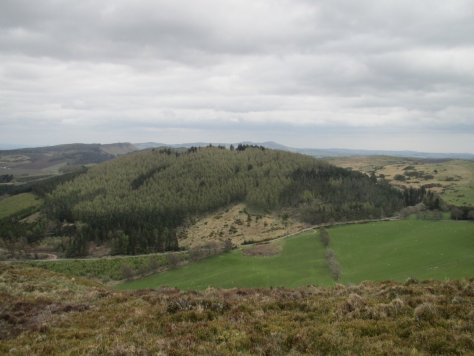Northballo Hill from Gask Hill