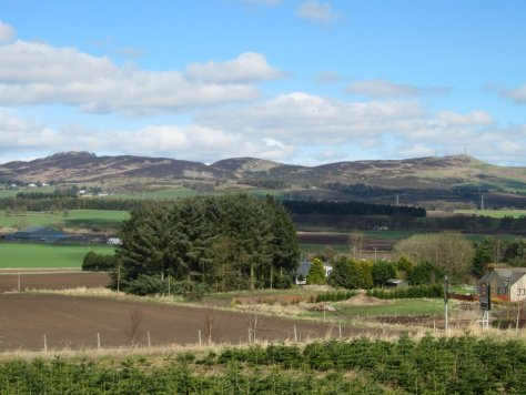Auchterhouse, Balkello and Craigowl hills from Muirhead