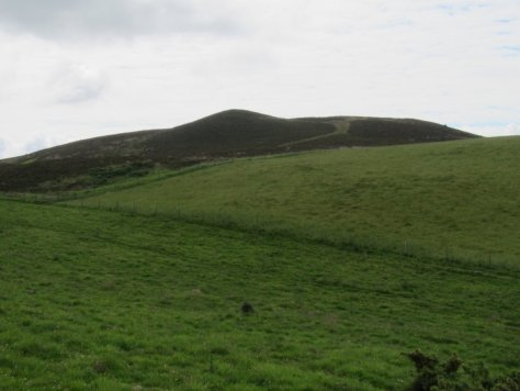 Unnamed Point 273 from Whinny Knowe