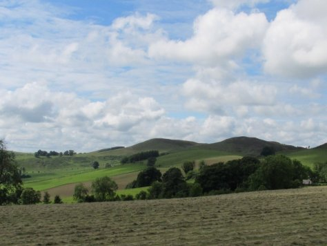 Smithton Knowe, Smithton Hill, Adrgarth Hill, from Palmer Wood