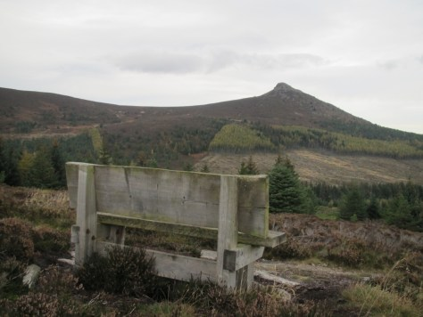 Memorial bench looking towards Mither Tap