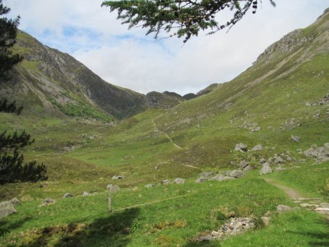 Glen Doll and Jock's Road above the forestry
