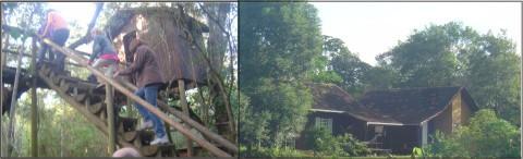 Lar da Árvore e Lares de Descanso