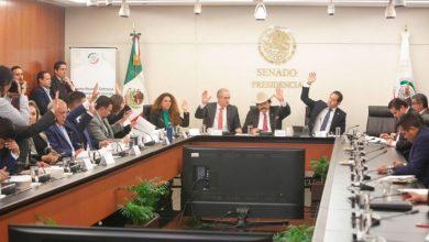 Photo of Senado aprueba a candidatos para ocupar la presidencia de la CNH