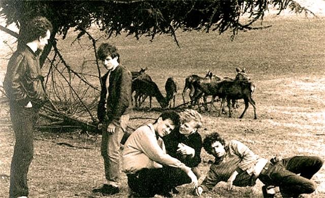 The Shrubs - John Peel session - 1987