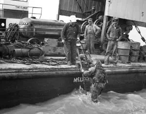 Safety Offshore: Halliburton Diver Servicing a Blowout Off the Coast of Louisiana Early 1950s