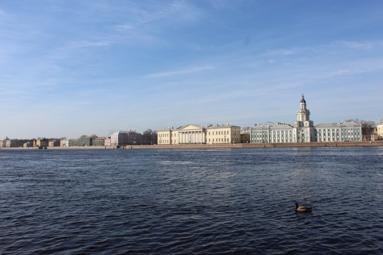 River Neva refuses to freeze in the sub-zero temperatures