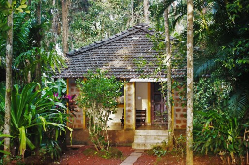 A cottage at Dudhsagar Plantation