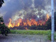 Calor faz regressar fogos ao distrito