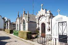 Câmara da Guarda pode vender jazigos do         cemitério municipal