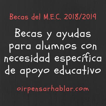 Becas del MEC 2018-19 para alumnos con necesidad específica de apoyo educativo