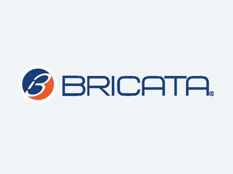 Bricata