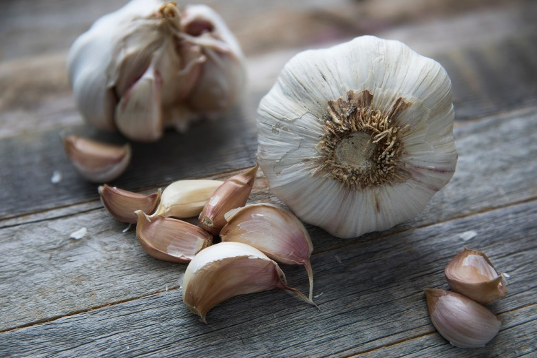 Photo Description: two fresh garlic bulbs and a number of garlic cloves are shown unpeeled.
