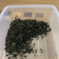 手作り茶葉
