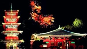 日光東照宮ライトアップ