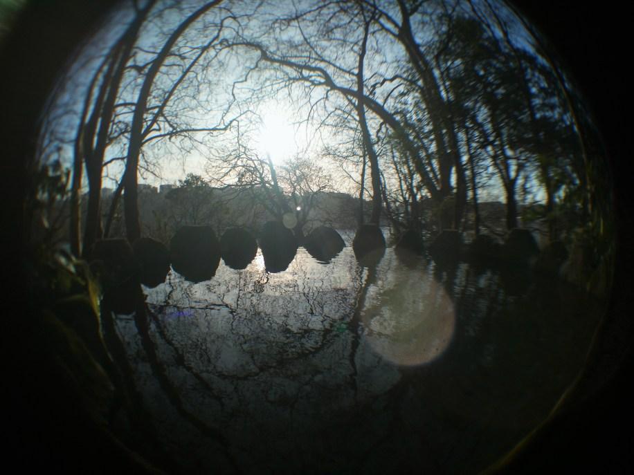 Pequeno lago no interior do Jardim   Crédito: Verônica Batista