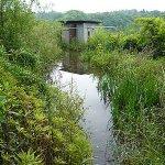 雄蛇ヶ池ポイントガイド(4)ポンプ小屋ワンド
