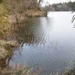 雄蛇ヶ池ポイントガイド(5)大広の西ワンド