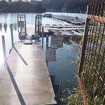 雄蛇ヶ池ポイントガイド(11)ボート桟橋から一本松の鼻