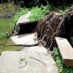 雄蛇ヶ池湖畔、台風9号で大きな被害(速報)