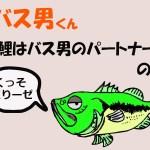 バス男くん【鯉はバス男のパートナー!?】の巻