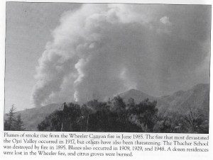 1985 Wheeler Canyon Fire