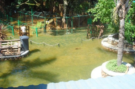 harties animal and snake park1