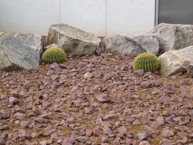 Yes, Las Vegas is in the desert.