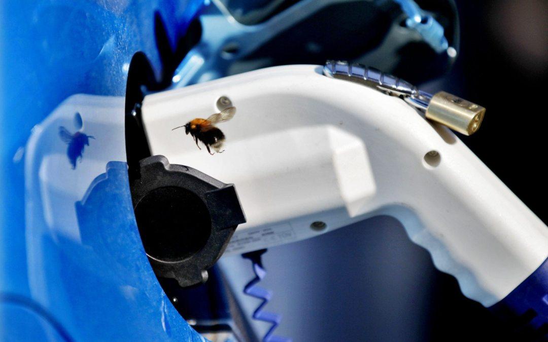 La mitad de autos vendidos en Noruega son eléctricos o híbridos