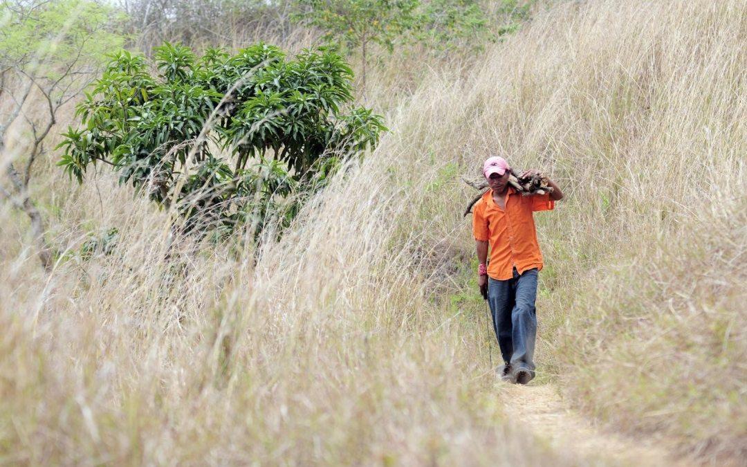 Los jóvenes centroamericanos están dejando sus casas por la sequía