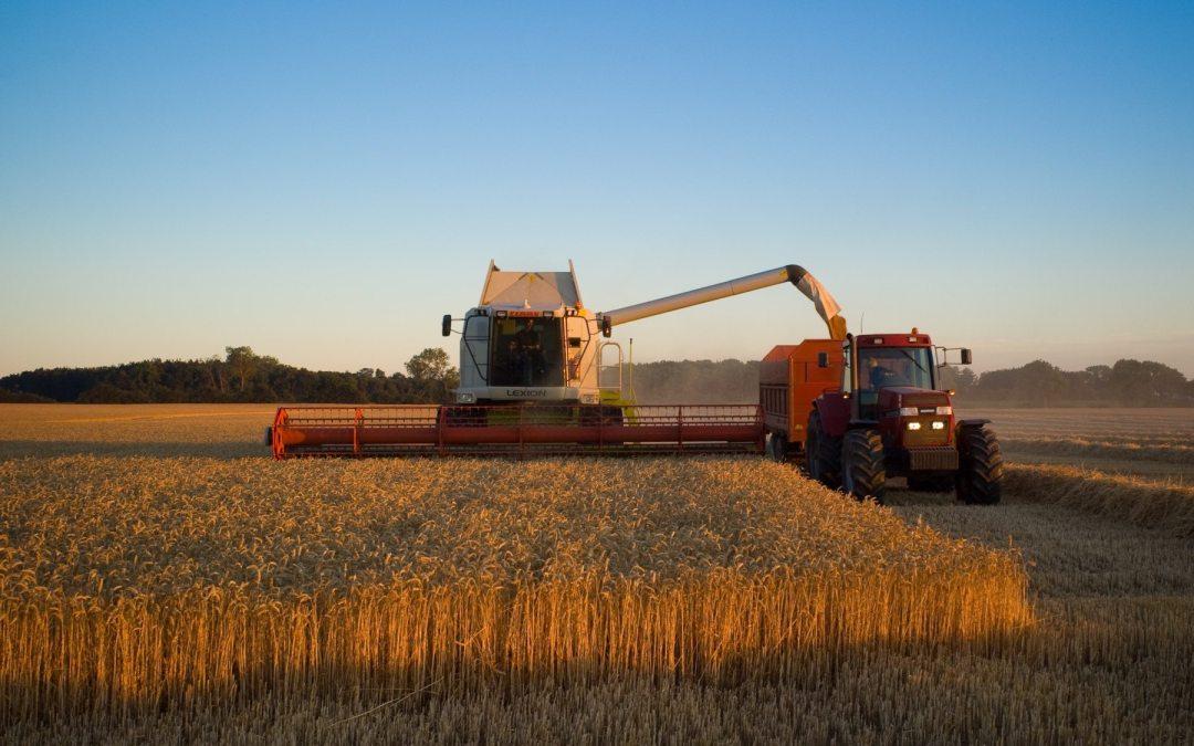 La agricultura industrial sufriría con el cambio climático. ¿Hay ...