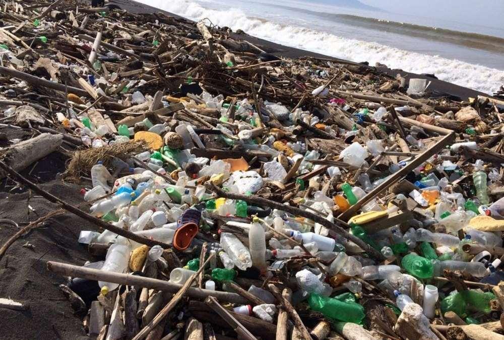 Gobierno enfila armas contra plásticos desechables