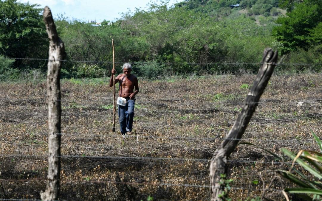 Campesinos hondureños desafían la sequía que golpea a Centroamérica