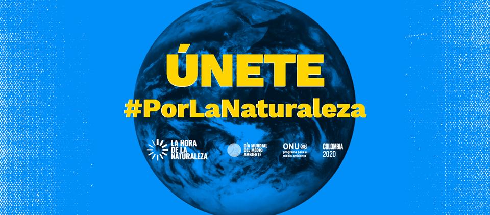 El Día Mundial del Ambiente se celebra en casa