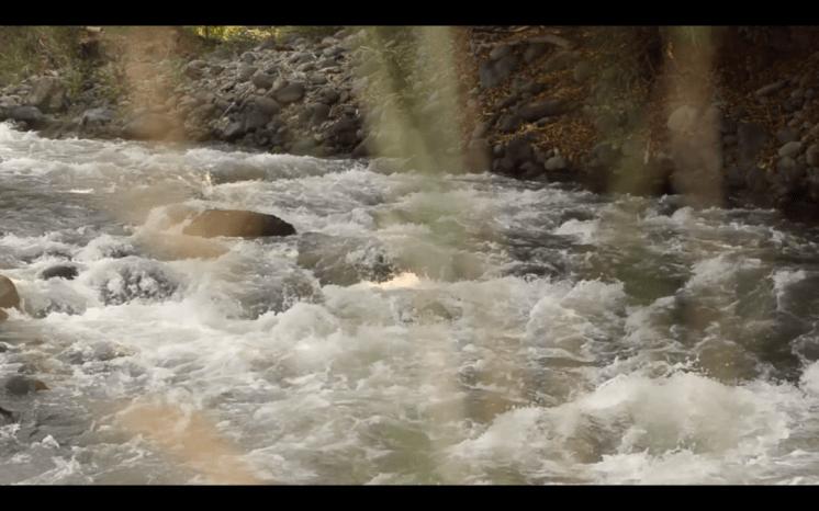 Bobillo, del agua a la tierra 3