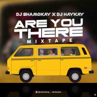 Mixtape : Dj Shamokay x Dj Haykay - Are You There Mix