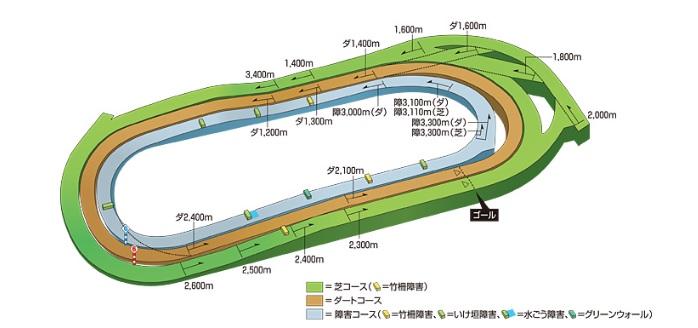東京競馬場 コース 傾向